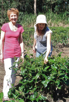 Jane Pettigrew and Vicky Bisogno at the tea plantations in the north of Argentina